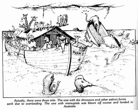 cartoon on the Bible and Noah's Ark
